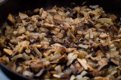 Одичалые грибы в сметанообразном соусе стоковое изображение rf