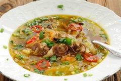 Одичалые гриб и овощной суп с chili в белой плите Стоковые Фотографии RF