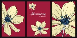 Одичалые цветки clematis Ботаническая иллюстрация Стоковые Изображения