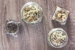 Одичалые чай и травы горы Стоковые Фото