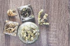 Одичалые чай и травы горы Стоковая Фотография
