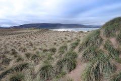 Одичалые дюны на maharees стоковые изображения rf