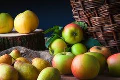 Одичалые яблоки и груши в корзине Стоковые Фото