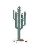 Одичалый вектор кактуса Стоковые Изображения RF