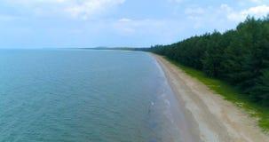 Одичалый взгляд песчаного пляжа сверху дел сток-видео