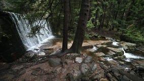 Одичалый водопад в Karpacz сток-видео