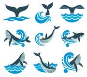 Одичалый кит в море развевает и вода брызгает значки вектора иллюстрация штока