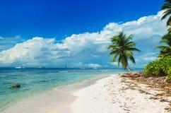 Одичалый нетронутый пляж на острове Saona Стоковое Изображение