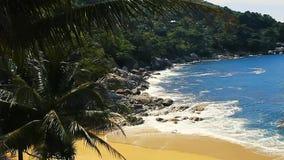 Одичалый пляж видеоматериал