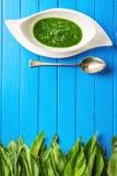 Одичалый чеснок выходит с супом ложки и чеснока в белую плиту на голубую деревянную предпосылку, здоровый образ жизни, сезонную т Стоковое фото RF
