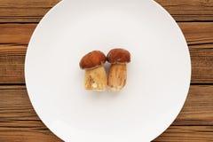 2 одичалых гриба porcini лежа на большом белом copyspace плиты Стоковое Изображение RF