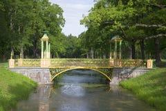 Одна из пар китайского моста в Александре паркует летний день Tsarskoye Selo Стоковое Изображение