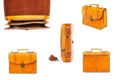 Одна кожа портфеля Стоковое Изображение RF