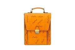 Одна кожа портфеля Стоковая Фотография RF