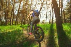 Одна молодая женщина - спортсмен в шлеме ехать горный велосипед вне города, на дороге в сосновом лесе Стоковые Изображения RF