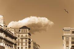 Одна птица летая над городом Стоковые Фото