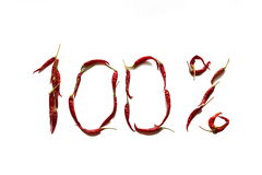 100 одного процента Стоковая Фотография