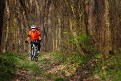 Одноколейный путь катания велосипедиста горного велосипеда Стоковое Изображение