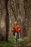 Одноколейный путь катания велосипедиста горного велосипеда Стоковые Изображения