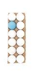 Одно голубое пасхальное яйцо Стоковые Изображения RF