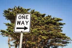 Одно знак и дерево пути Стоковые Изображения