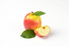 Одно и квартальные яблоки Стоковое фото RF