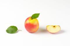 Одно и квартальные яблоки Стоковое Изображение RF