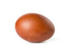 Одно коричневое пасхальное яйцо изолированное на белизне Стоковые Фотографии RF