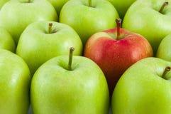 Одно красное яблоко среди зеленых яблок Стоковые Фотографии RF