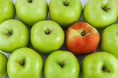 Одно красное яблоко среди зеленых яблок Стоковые Фото