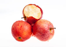 Одно красное яблоко biten  Стоковые Фото