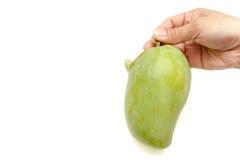 Одно манго ручки руки на белой изолированной предпосылке Стоковое Фото