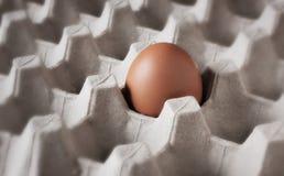 Одно свежее яичко на клети Стоковые Изображения