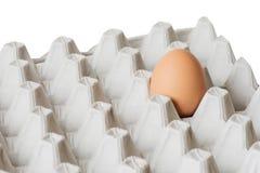 Одно яичко в пакете Стоковые Фотографии RF