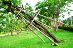 О поддерживая молодого дерева от ветра в саде Стоковые Фото