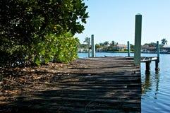 о стар над пристанью засаживает деревянное Стоковое Фото