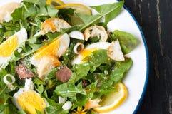 Одуванчик выходит салат еды на плиту стоковое фото rf