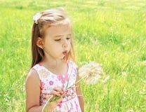 Одуванчик красивой маленькой девочки дуя стоковая фотография