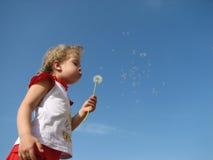Одуванчик маленькой девочки дуя  Стоковое Изображение