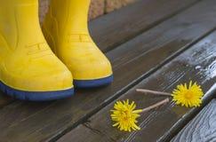 Одуванчик на ногах ` s ребенка Стоковая Фотография