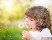 Одуванчик счастливого ребенка дуя Стоковая Фотография