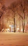 Павильон в парке Харькова на ноче - зиме 2017 Стоковые Фото