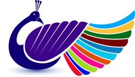 павлин логоса Стоковые Фотографии RF
