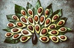 Павлин сделанный от palta авокадоа и листьев дерева авокадоа на сером цвете Стоковое Фото
