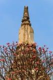 Пагода стародедовска в Таиланде Стоковые Изображения