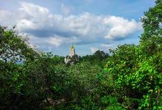 Пагода в лесе Стоковое фото RF