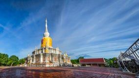 Пагода гиганта панорамы Стоковое фото RF