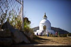 Пагода международного мира Стоковое Фото