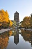 Пагода на виске Cishou Стоковые Фотографии RF