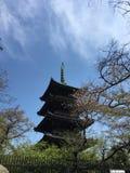 Пагода ` Kan ei-ji на парке Ueno Стоковые Изображения